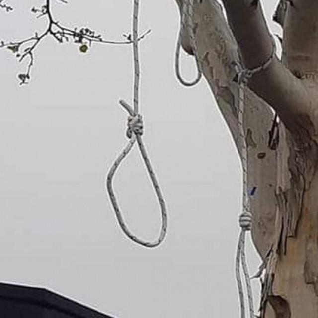 Omče na stablu u Dubravi i Ivan Rubelj u krugu