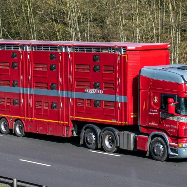 Ilustracija, kamion