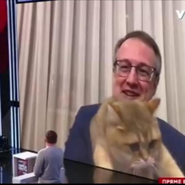 Heraščenko i mačak