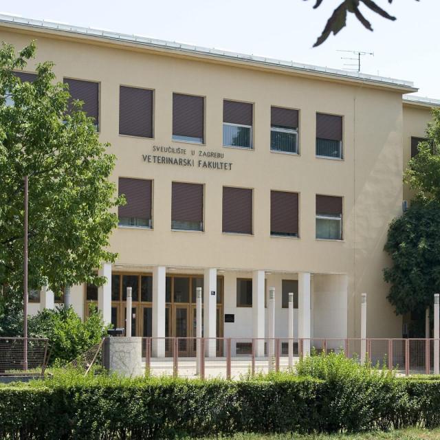 Veterinarski fakultet