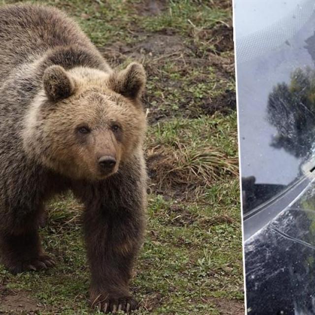 Arhivska fotografija medvjeda; Šteta na automobilu nakon napada medvjeda