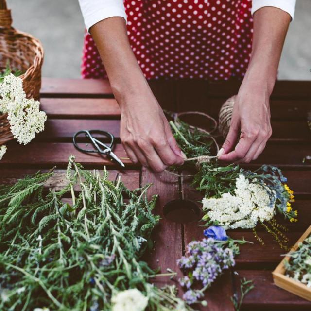 Young woman preparing medicinal herbs for tea