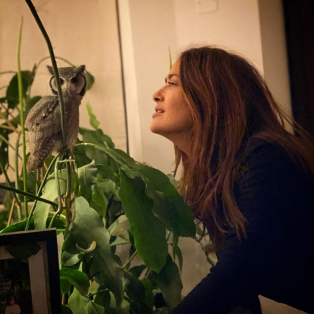 Salma Hayek i ljubimica sova
