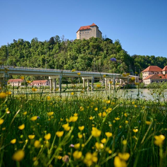 Posavje Slovenija