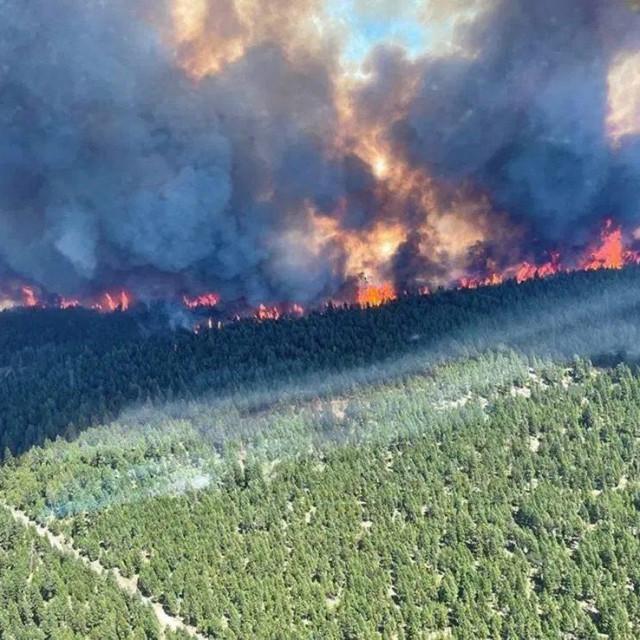 Požar u Britanskoj Kolumbiji, Kanada