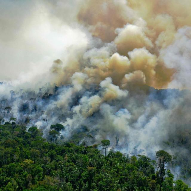 Požar u Amazoniji