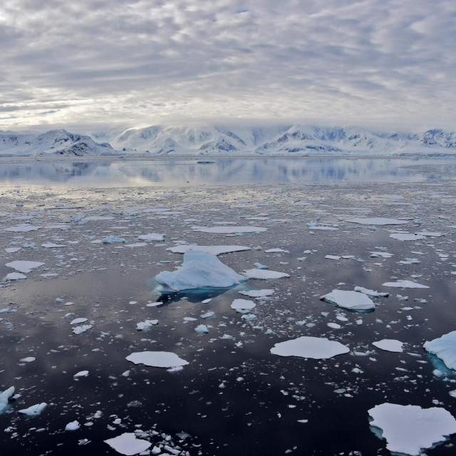 Ledenjak u Zaljevu Chiriguano na Južnim Shetlandskim otocima