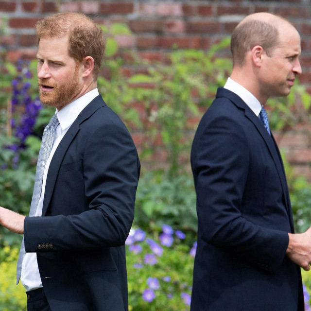 Princ Harry i princ William