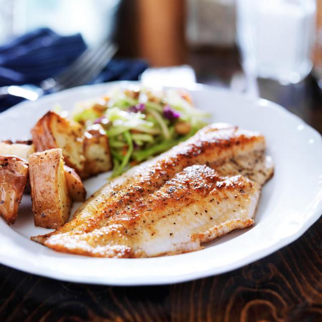 Nutricionističke preporuke za zdravu i uravnoteženu prehranu uobičajeno uključuju dva obroka ribe tjedno