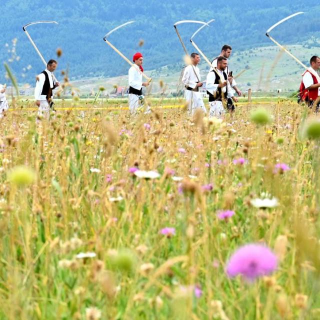 Košnja trave na Kupresu svake godine privuče i gledatelje i natjecatelje
