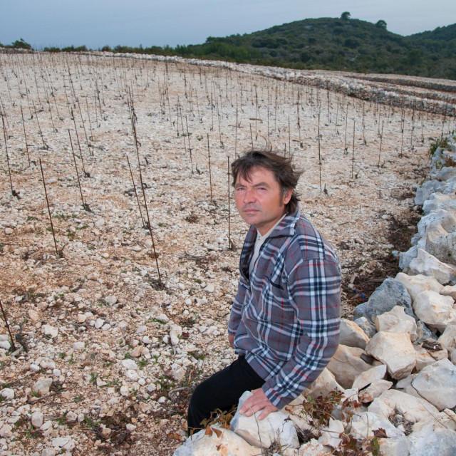 Vinarija Milina Bire, Franko Milina Bire, vinar i vlasnik vinarije