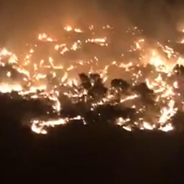 Požar na Braču