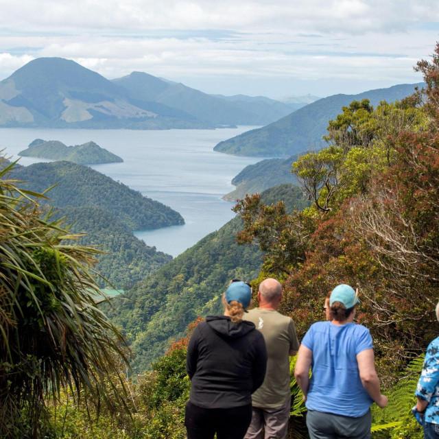 Duncan Bay, Novi Zeland