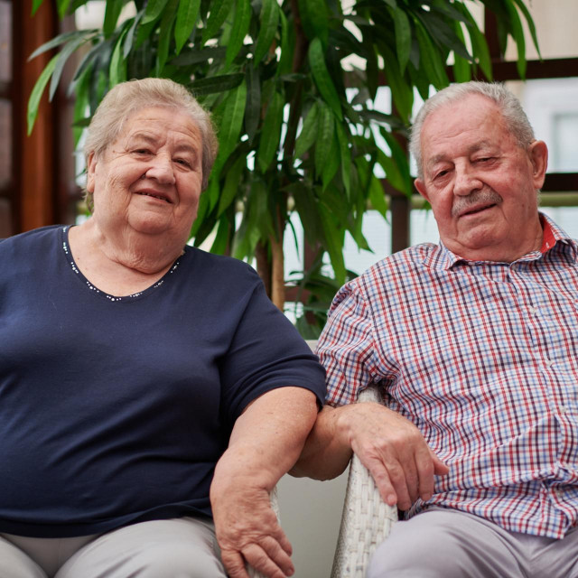 Bračni par Palfi