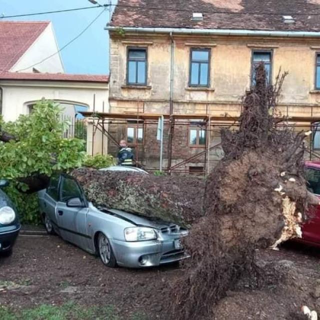 Posljedice olujnog nevremena u Sisku