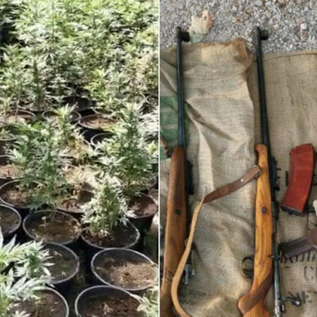 Zaplijenjena marihuana i oružje u Grudama