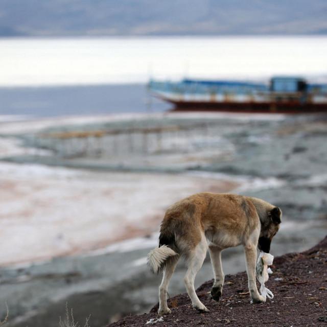 Jezero Urmia, arhivska fotografija