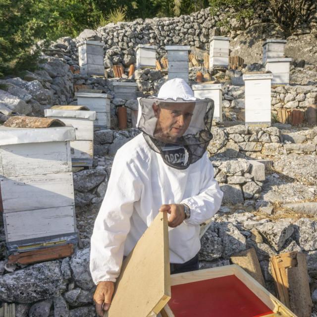 Ivo Lopina predsjednik je Pčelarskog društva Majkovi