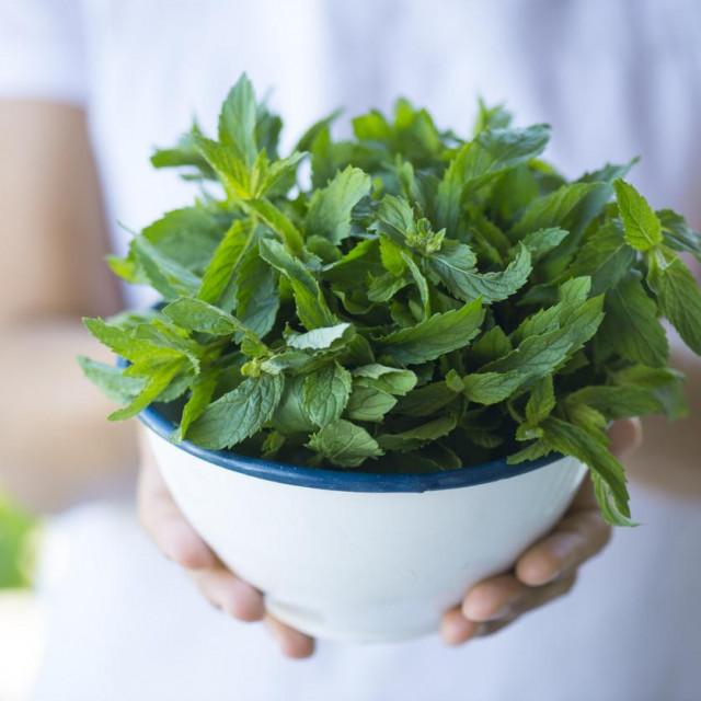 Karakterističnu aromu i okus daje spoj mentol.