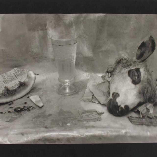 Josip Klarica: Ovčja glava II, 1979.