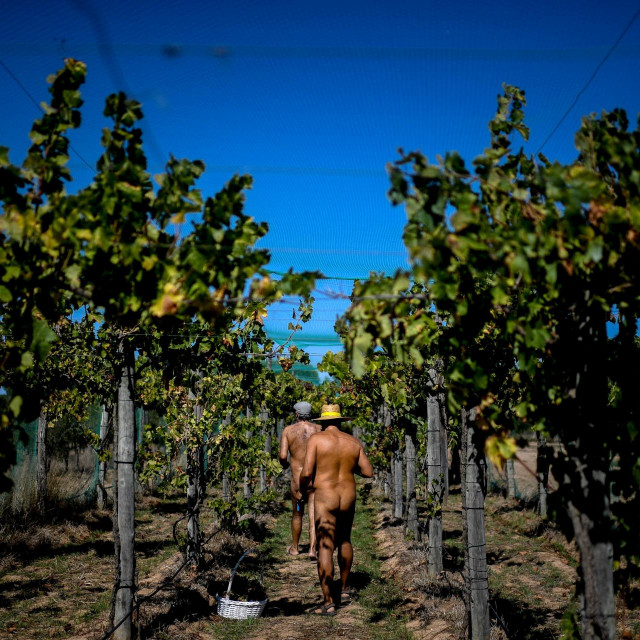 Naturizam kao životni koncept u porastu je u Portugalu u posljednjih nekoliko godina