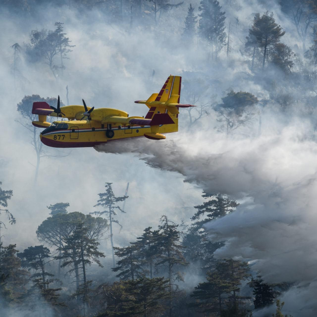 Ilustracija / Gašenje šumskog požara