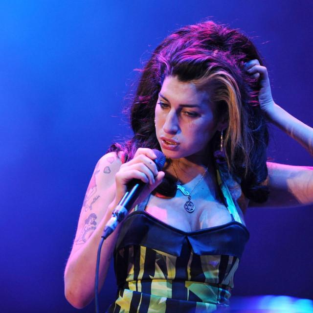 Na aukciji će se naći i haljina koju je pjevačica nosila na svom posljednjem nastupu, u Beogradu 2011. godine.