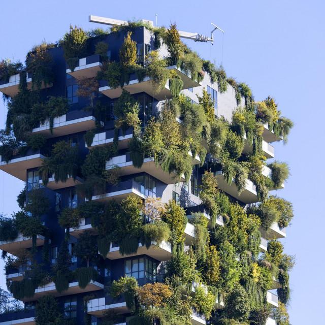 Vertical Forest (Bosco Verticale), Milano