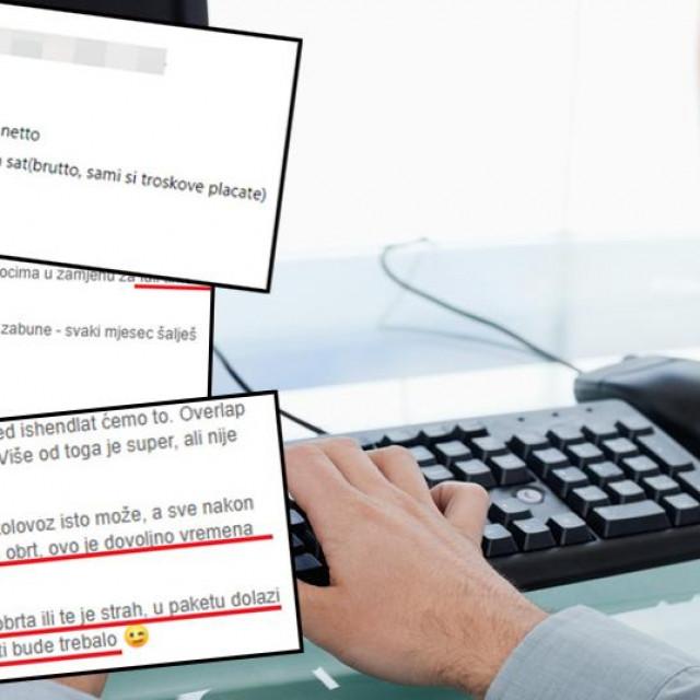 Screenshot jedne od ponuda, ilustracija IT stručnjaka